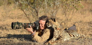 wildlife photography career abroad